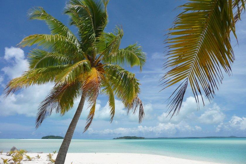 Auszeit Neuseeland Fidschi